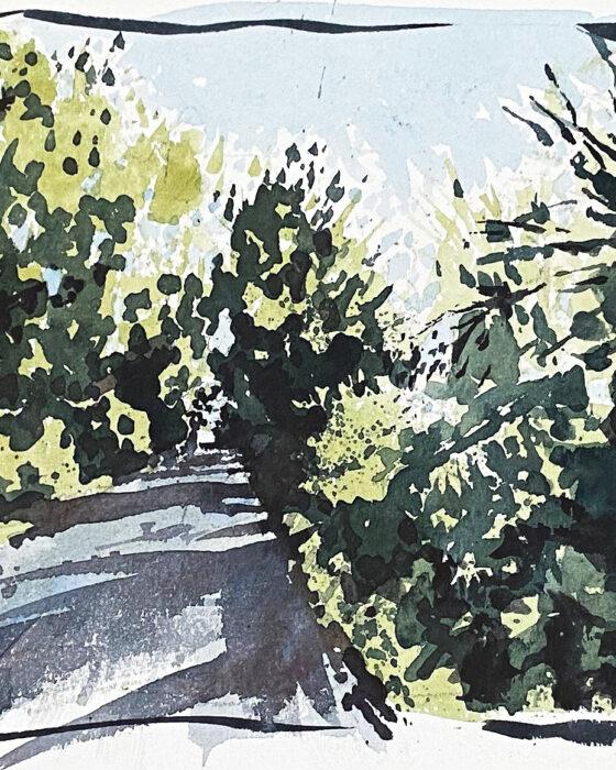 220x165 leafy lane summer